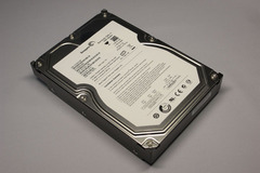 Seagate ST31000333AS