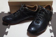 Timberland Emoto Oxford