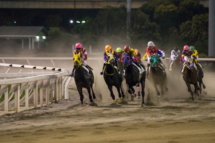 東京シティ競馬